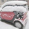 雪の降り始め…