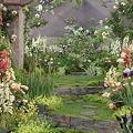 Photos: モネの庭