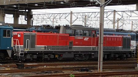 DSCN3420