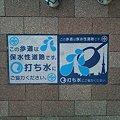 写真: DSC_0388