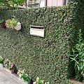 Photos: プミラの塀