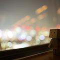Photos: 東京タワーからの夜景を楽しむダンボー