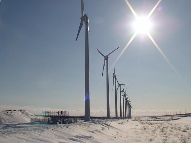 オトンルイの風車