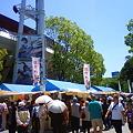 Photos: NEC_0008