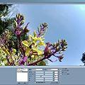 Photos: color_control