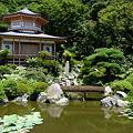 写真: 光明寺庭園