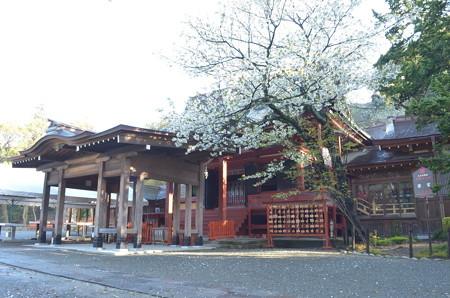 鶴岡八幡宮・若宮
