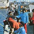 Photos: 1978.4釣り人 (3)