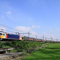 Photos: 東北本線 東鷲宮-栗橋 寝台特急 カシオペア