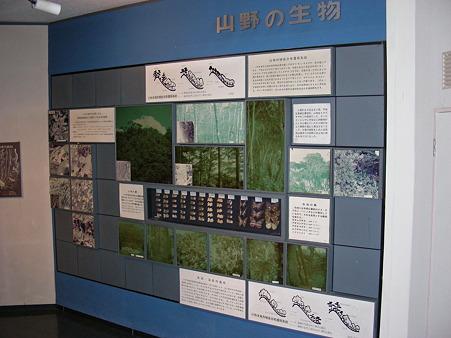 いわき市文化センターの展示スペース