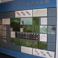 写真: いわき市文化センターの展示スペース