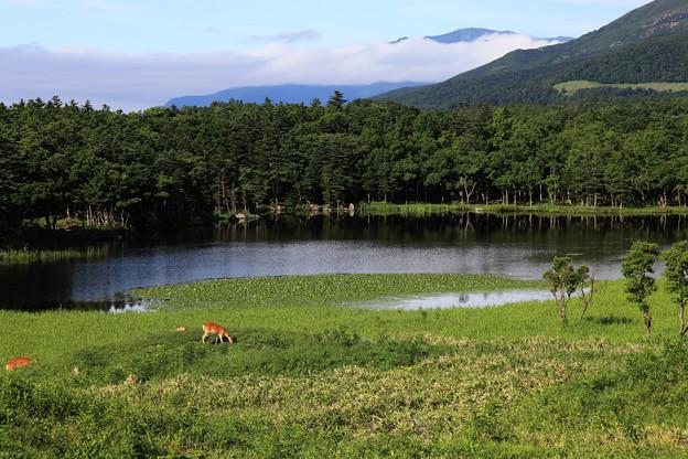 知床の一湖