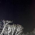 Photos: 熊の尾が見えた夜