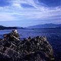 写真: 広田湾・潮の香り