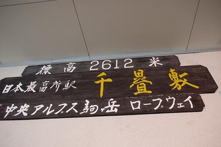 IMGP3919