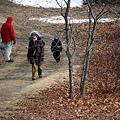 A Winter Walk  1-8-11