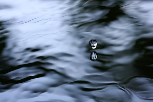 水~怪奇シリーズ