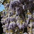Photos: 2009-04-26-12-43-04_0024