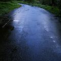 Photos: 空色の道