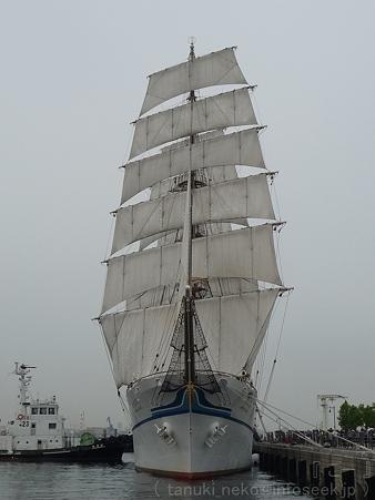120602-新日本丸 (3)