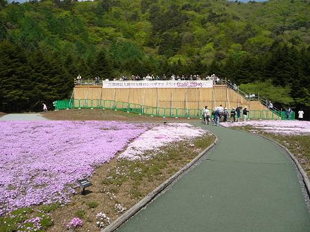100518-富士芝桜まつり-23