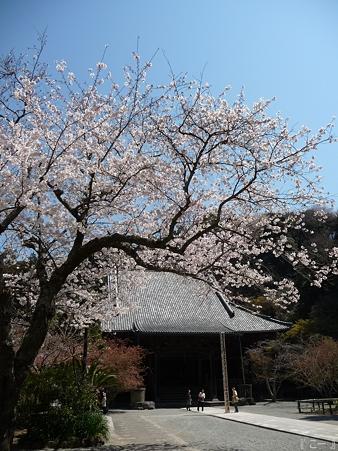 110406-妙本寺 (9)