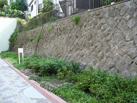 110622-東横廃線 反町→横浜 (35)