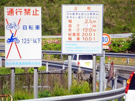 椎田道路はカナブンはダメです。