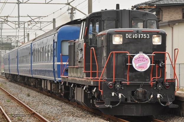 2010.11.13 (10)