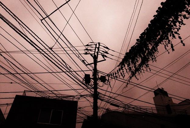 青山の電線