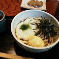 Photos: 讃岐うどん