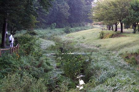 2010.09.17 和泉川 流跡