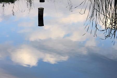 2010.11.04 和泉川 水面に杭と青空