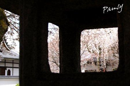 石灯籠の窓から・・