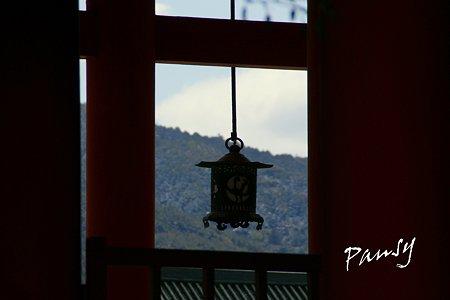 平安神宮神苑にて・・1