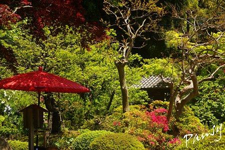 赤い傘のある風景・・