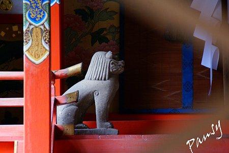 スフィンクスのように・・伏見 御香宮神社・・17