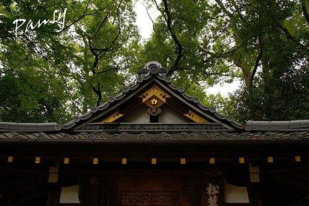 美しい屋根・・太神宮
