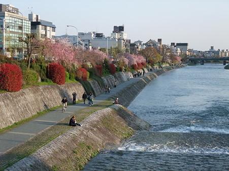 2010年4月3日京都01