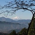 Photos: 101215-68もみじ台からの富士山