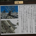 Photos: 110511-40高知城・石樋