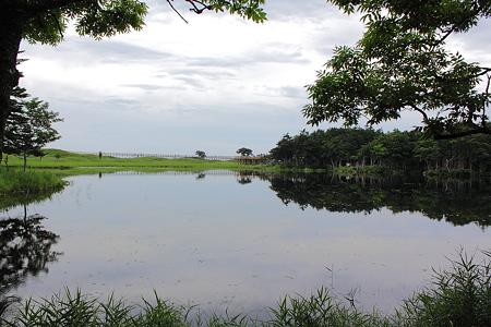 知床五湖 一湖
