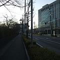 Photos: さくら通り - 朝日 - 1