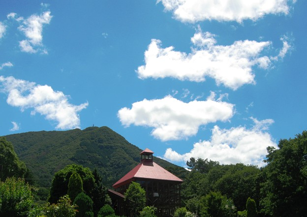香夢里の夏の雲~香木の森ハーブガーデン~