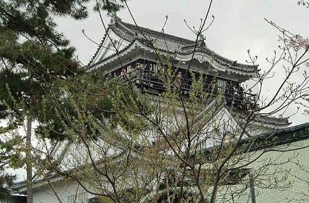 岡崎の桜まつり 2010' 2010年4月1日(木)〜15日(木)-220407-1
