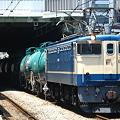 写真: pf1041-20080704