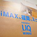 Photos: UQWiMax Event