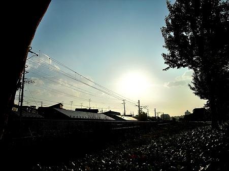 眩しい太陽