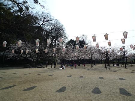 亀山公園(1)