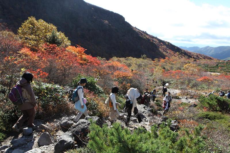 IMG_8911那須 茶臼岳 姥ヶ平の紅葉